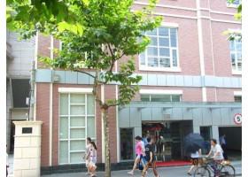 上海卢湾区轻玻商务楼出租