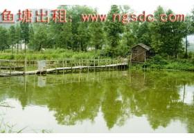 青浦城区6亩天然鱼塘加住房60平方出租