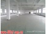 青浦区独栋新建标准厂房出租