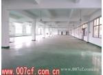 松江车新公路独门独院厂房出租