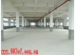 青浦北青公路单层厂房出租