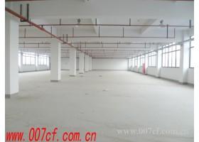 嘉松中路400平方米仓库出租