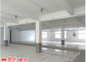 普陀区660平方米标准厂房出租