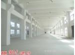 金山枫泾工业区新建独门独院厂房出租