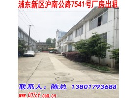 浦东新区沪南公路7541号厂房仓库出租
