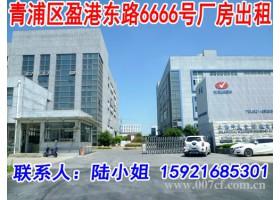 青浦区104板块标准厂房出租